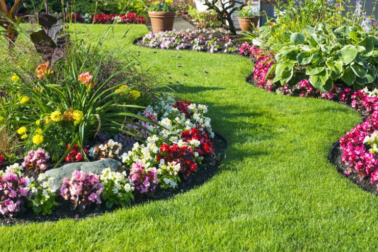 délimitation jardin